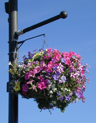 2019 Chamber Flower Beautification Project
